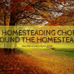 Fall Homesteading Chores Around the Homestead