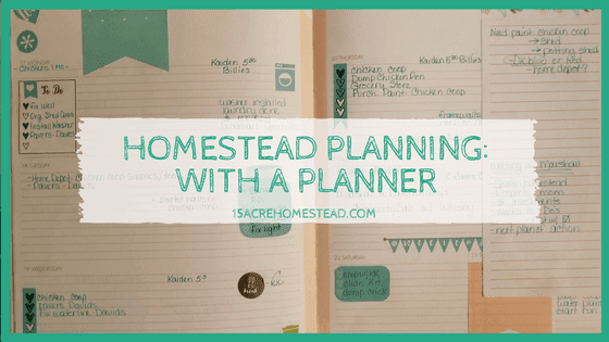 Homestead Planning with a Planner featured image