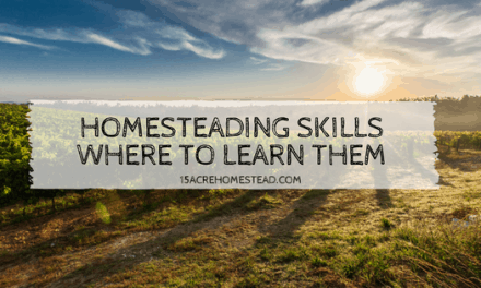 Homesteading Skills: Where To Learn Them