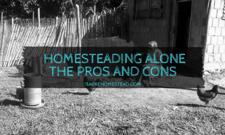 Homesteading Alone: The Pros and Cons