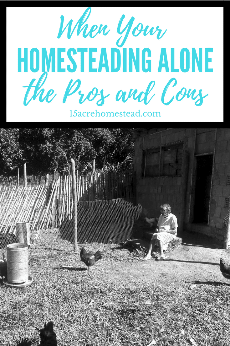 Homesteading alone is easy when you understand the pros and cons.