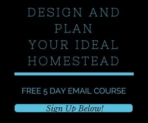 design and plan e mail course widget