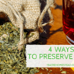 4 Ways to Preserve Herbs on the Homestead