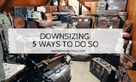 Downsizing: 5 Ways To Do So