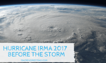 Hurricane Irma 2017: Thoughts Before the Storm