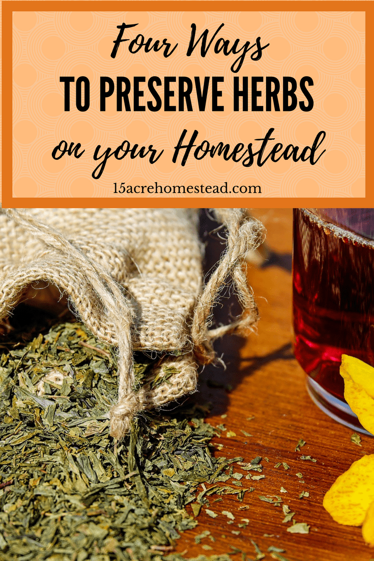 Preserving herbs on your homestead doesn't have to mean drying them into spice jars. There are other options.
