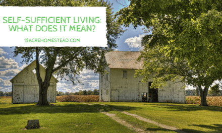 Self-Sufficient Living: What Does It Mean?