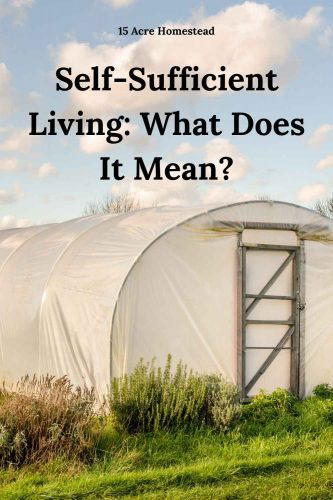 Do you know what self-sufficient living means? This post will explain it all with great resources too!