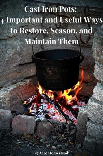 Cast iron pots are being used by more and more people. Thrift stores, Second-hand shops and online marketplaces like Facebook Marketplace and Craigslist are all great places to find them.