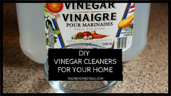 Make your own DIY vinegar cleaners for your entire home.