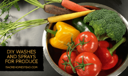 DIY Washes and Sprays for Produce