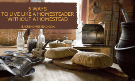 5 Ways to Live Like a Homesteader without a Homestead