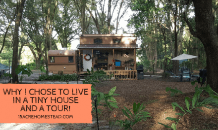 Why I Chose a Tiny House and a Tour