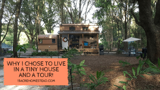 Choosing a tiny house means less maintenance, less cleaning and less stress. Come tour my tiny house!