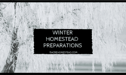 Winter Homestead Preparations