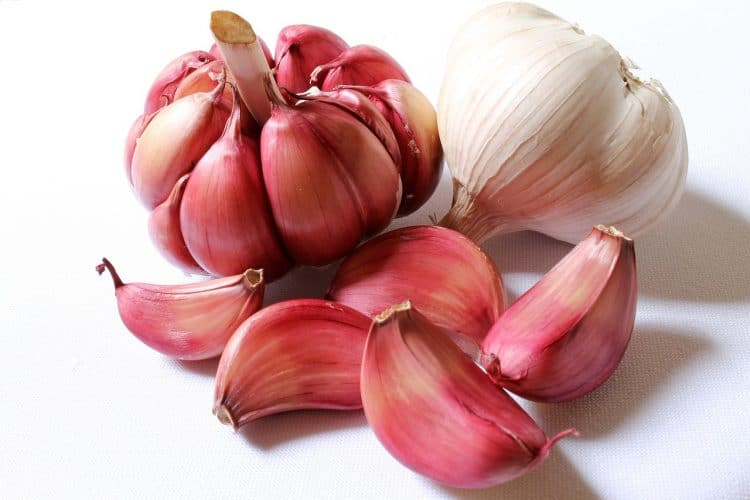 Natural Remedies: Garlic