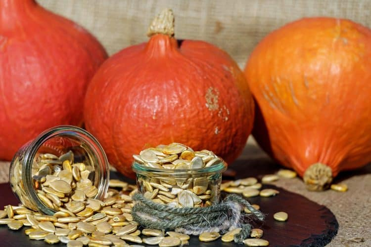 Pumpkin recipes from around the web including flavored pumpkin seeds.