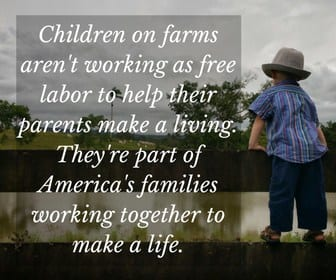 The ethics and morals that were instilled are some of the reason why I am thankful to be homesteading.