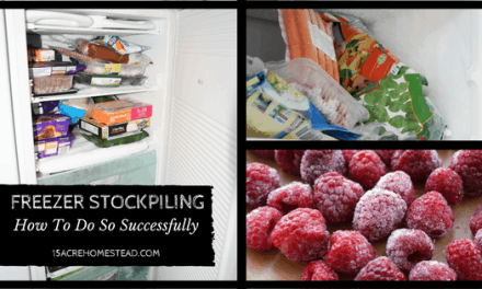 Freezer Stockpiling: How To Do So Successfully