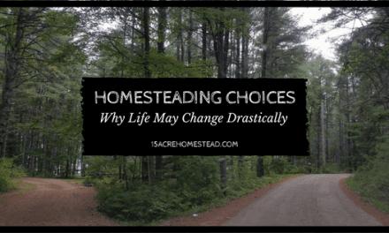 Homesteading choices