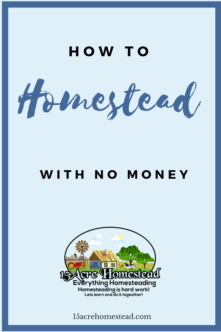 Are you afraid to start a homestead because you are scared you won't have enough money_ Find out how to homestead with absolutely no money right now.