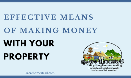 Effective Means Of Making Money With Your Property