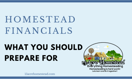 Homestead Finances: What You Should Prepare For
