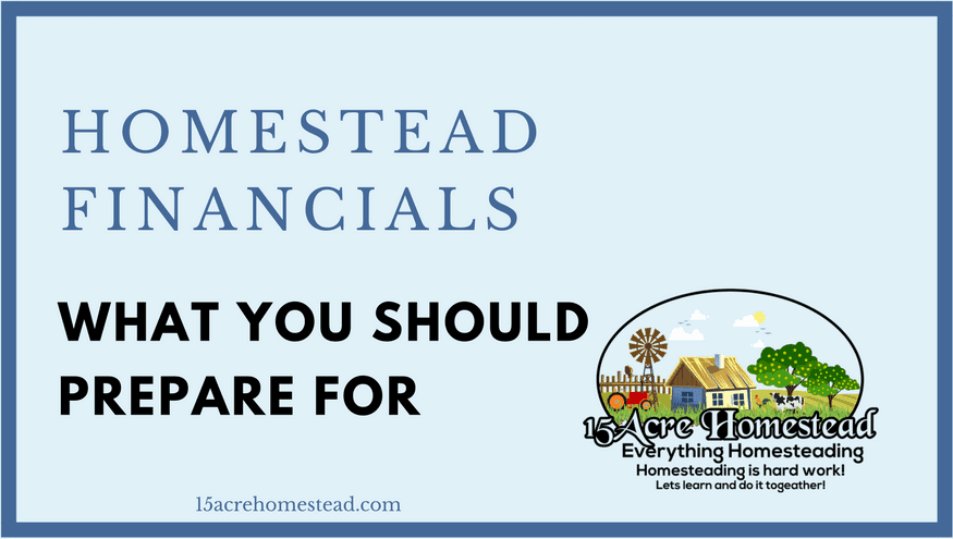 Homestead Financials What You Should Prepare For