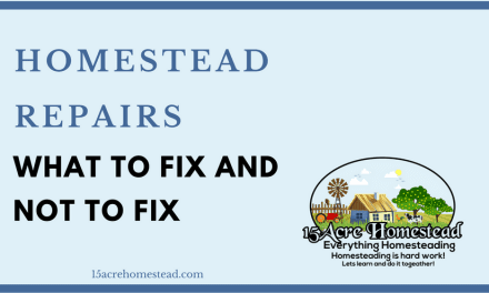 Homestead Repairs: Whether To Fix or Not To Fix