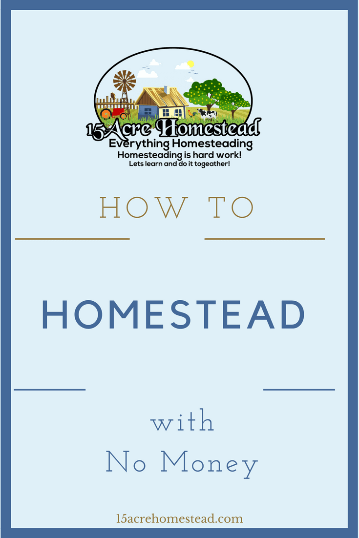 Homesteading is challenging enough without having to worry about having enough money to do so. But don't worry, find out how to homestead with absolutely no money here.