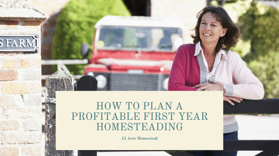 You can easily plan a profitable first year homesteading if you take the time to plan and think ahead. Preparing your homestead with the right animals and opportunities before you start can bring quite an income to first time homesteading families. Learn how you can make money homesteading your first year now.