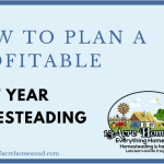 How To Plan a Profitable First Year Homesteading