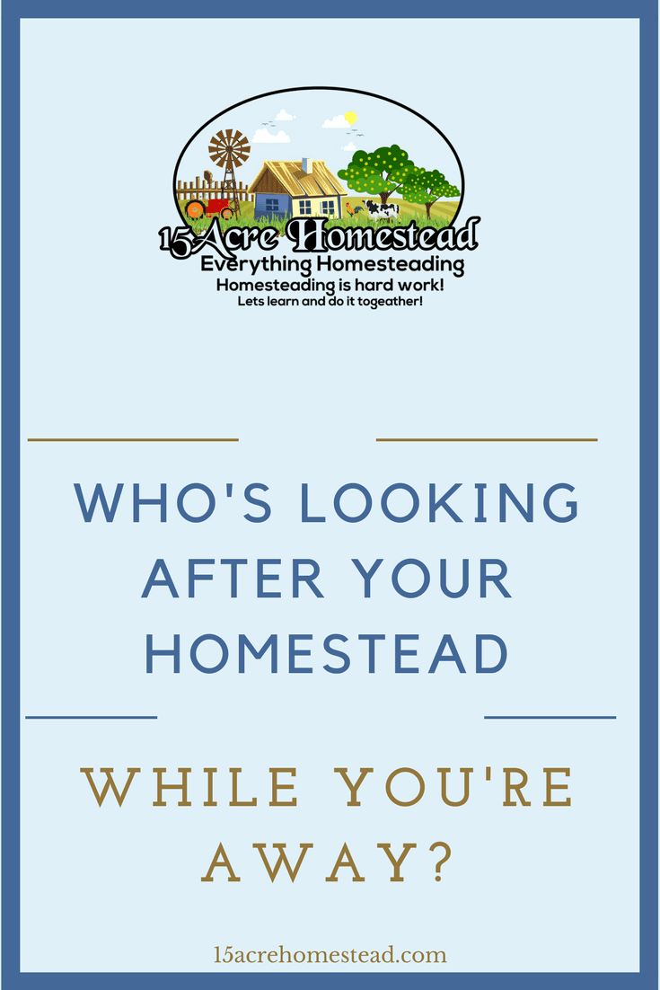 If you need some suggestions for who is looking after your homestead while you're away then this is the post for you.