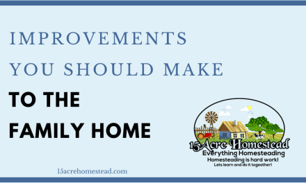 Improvements You Should Make To The Family Home