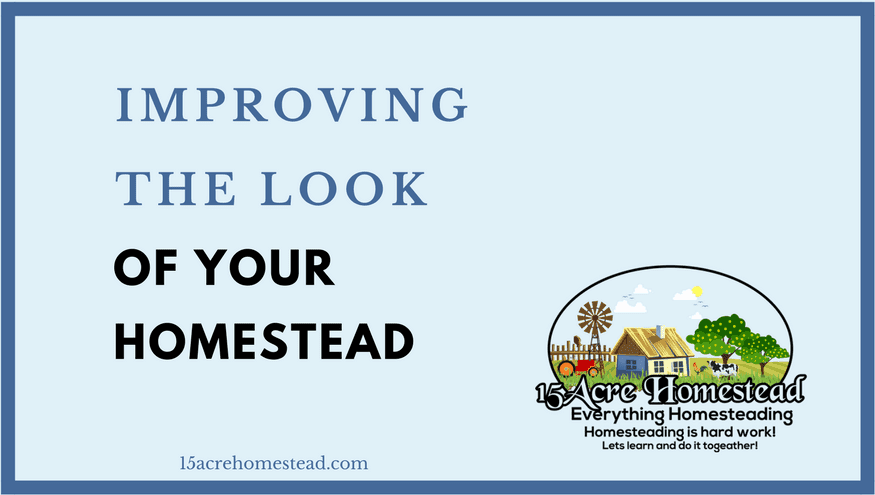 Improving the look of your homestead