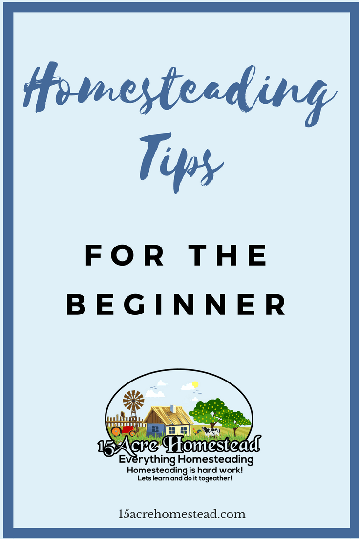 New homesteaders can become overwhelmed if they do not know about these homesteading tips.