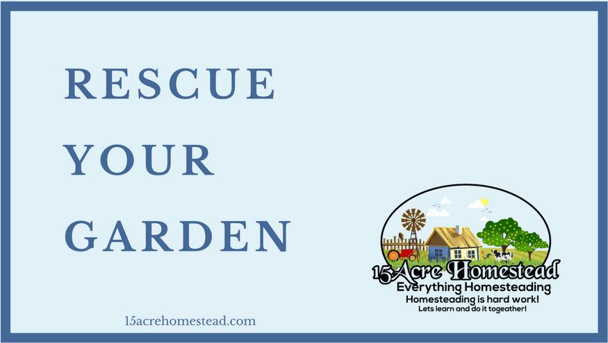 Rescue Your Garden