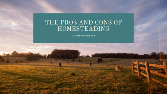 The Pros and Cons of Homesteading featured Image