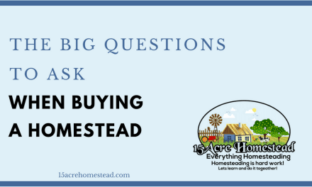 The Big Questions to Ask Before Buying a Homestead