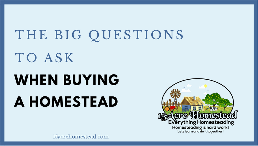 The big questions to ask when buying a homestead