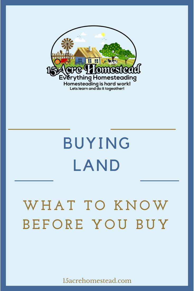 There are certain things you should know before buying land for your homestead.