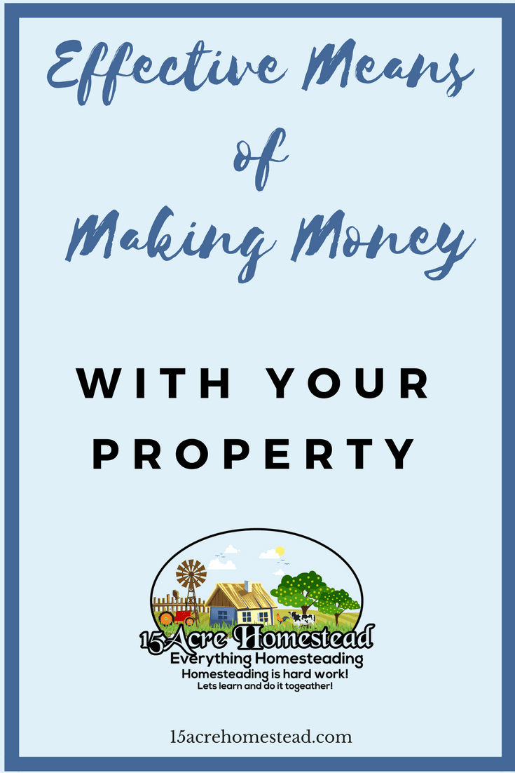 There are many ways of effectively making money with your property.