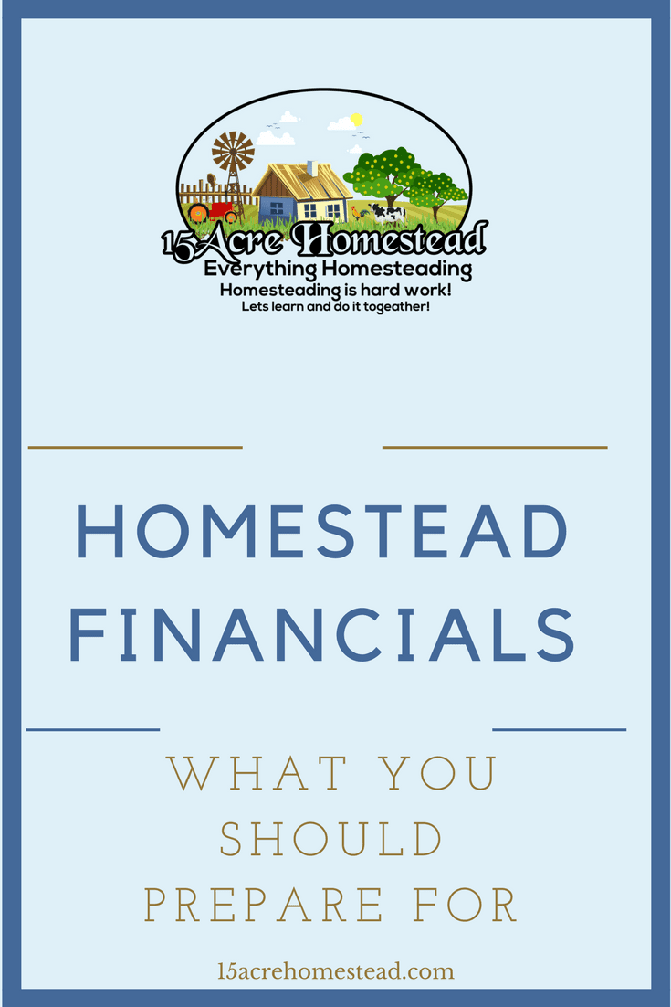 There will always be a few ways that money will be important on your homestead. For this reason, planning your homestead finances is very important.