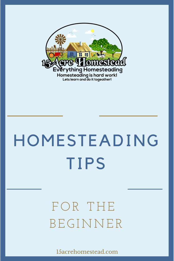You can benefit on your new homesteading journey by learning these easy homesteading tips.