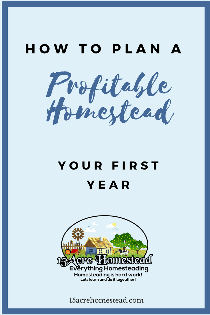 You can easily plan a profitable first year homesteading if you take the time to plan and think ahead.