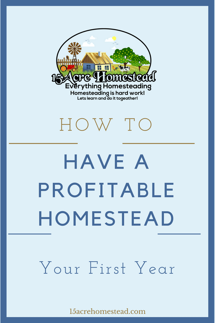 You can plan a profitable homestead your first year by following these steps.