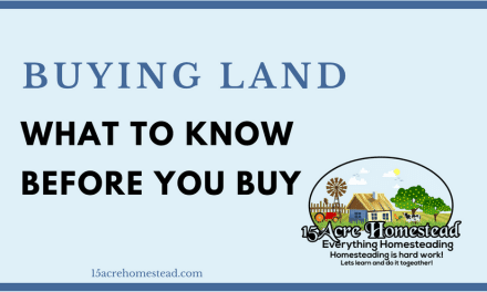 Let's Talk About Buying Land: What To Know Before You Buy