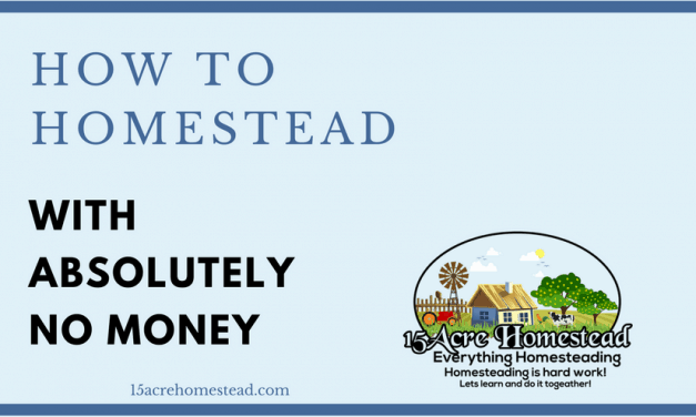 How to Homestead With Absolutely No Money