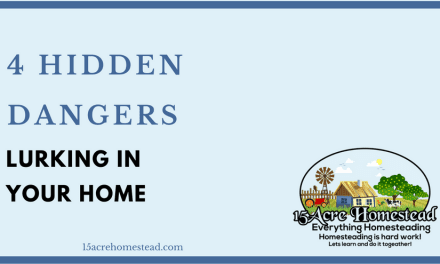 4 Hidden Dangers Lurking In Your Home
