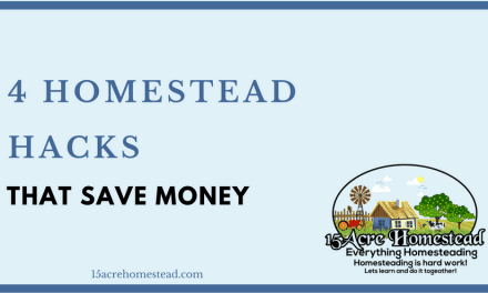 4 Homestead Hacks That Save Money
